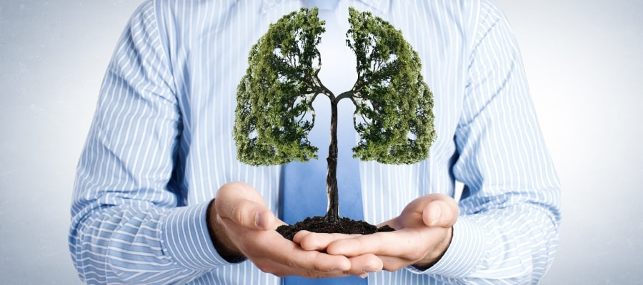 Profesjonalne Respiratory Transportowe Axcent Medical Musca x1 ix 2